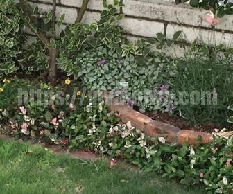 おしゃれ花壇の作り方