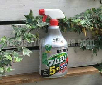 バラの毛虫退治の殺虫剤