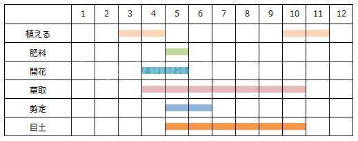 芝桜をの育て方の工程表