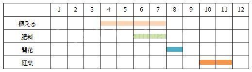 コキアの育て方のスケジュール表