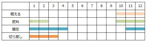 パンジーを育てる年間スケジュール表