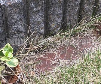 芝生の根切りの荒れた施工前
