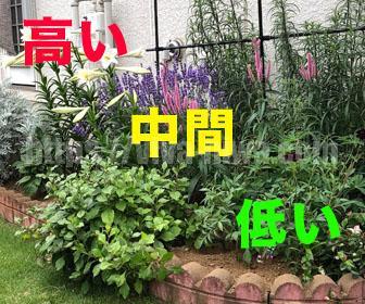 花壇の作り方の配列とレイアウト